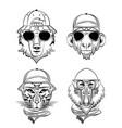 hipster wild animals cartoon vector image vector image