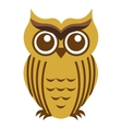 owl bird cute icon vector image