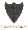 Realistic Black beard vector image vector image
