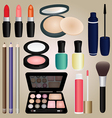 Set of Cosmetics and Make Up Brush vector image vector image