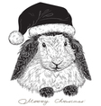 rabbit Santa Claus vector image