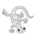 coloring page with gecko in zentangle style vector image vector image