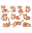 cute batigers cartoon jungle animal for kids vector image vector image