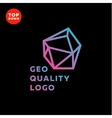 Outline gradient sign stone style trend in a line vector image vector image