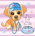 puppy dog labrador retriever vector image