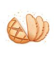 rye round bread vector image vector image