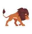 walking lion proud powerful mammal jungle animal vector image vector image