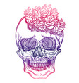 with a human skull and vector image vector image