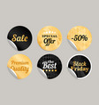 gold black round stickers vector image