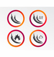 hot chili pepper icons spicy food symbols vector image