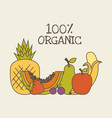ornic fruits design vector image vector image