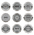 set of vintage metal design elements on white vector image