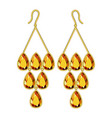 topaz earrings mockup realistic style vector image vector image