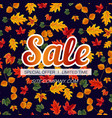 vivid template of seasonal sale banner vector image vector image