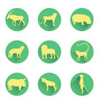 african animals silhouettes on the substrates vector image vector image