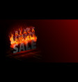 black friday sale banner hottest discounts fire vector image vector image