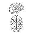 brain outline symbols vector image vector image