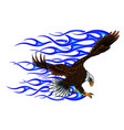 eagle with flame blue vector image vector image