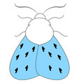 moth with blue wings on white background vector image vector image
