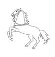 wild horse silhouette vector image