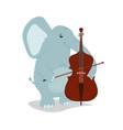 animals play music