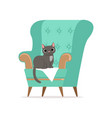 cute gray cat sitting on a turquoise armchair vector image