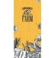 Organic farm with leaves pumpkin corn cob ear vector image vector image