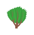 Tree with green leaves icon cartoon style vector image vector image