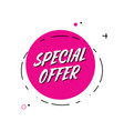 trendy minimal flat design special offer vector image vector image