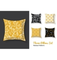 Set Of Throw Pillows In Matching Unique vector image