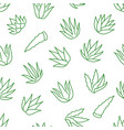 aloe vera background agave plant seamless pattern vector image vector image