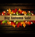 autumn special sale poster isolated