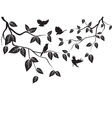 leaves and birds vector image vector image
