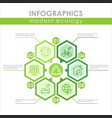 modern ecology infographic template colorful vector image vector image