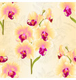 seamless texture branch yellow orchid vector image vector image