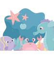 starfishes seahorse crab algae snail life cartoon vector image