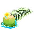 Fresh coconut juice on white background vector image
