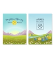 Apiary in alpine meadows mountains Honey Farm vector image vector image