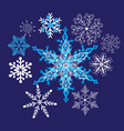 bright winter beautiful snowflakes vector image vector image