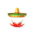 cinco de mayo mexican party poster banner vector image