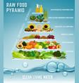 raw food pyramid vector image vector image