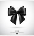 realistic black bow and ribbon vector image