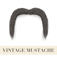 Realistic Black vintage drooping mustache vector image vector image