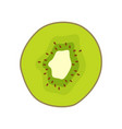 sour kiwi round slice as ingredient for detox vector image