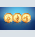 top coin of cryptocurrency vector image vector image