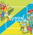 tropical fruits flowers and parrot birds banner vector image vector image