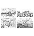 vineyards landscape tuscany fields old looking vector image vector image