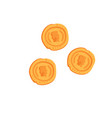 ancient roman gold coins on a vector image vector image