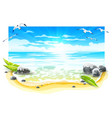 evening sunset at sandy beach vector image vector image