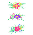 floral hand-drawn elements flat isolated elements vector image vector image